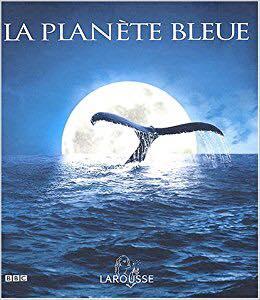 Quand vous avez le blues, ces bleus à l'âme, ces peurs bleues…Vous êtes sur la Planète Bleue